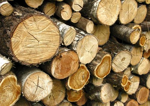 Billot de bois de chauffage - Reste de bois brule synonyme ...